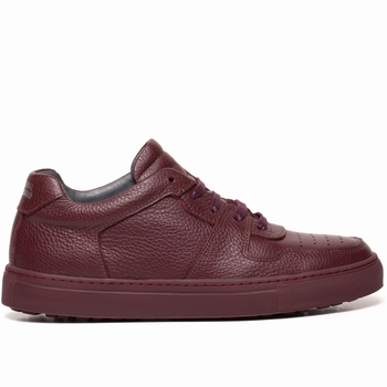 Sneakers, National Standard  - 100% Cuir - Grainé - Semelle