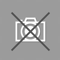 Bague acier en 3 elements independants largeur totale dessus