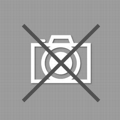 peluche gris accessoires