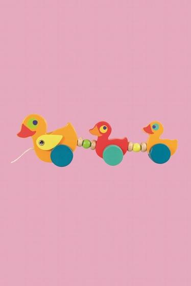 The 3 small wooden ducks will stimulate the desire to walk.