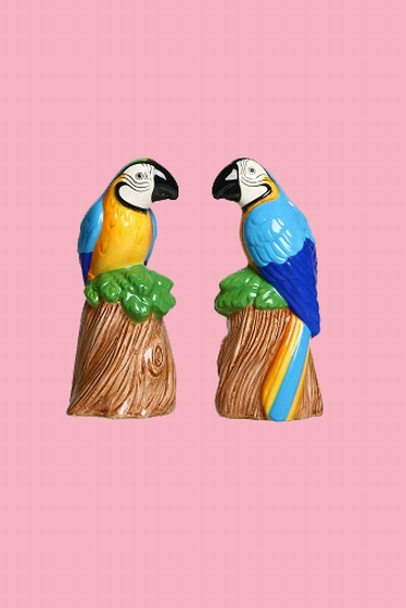 This salt and pepper set will cheer up your dining table or