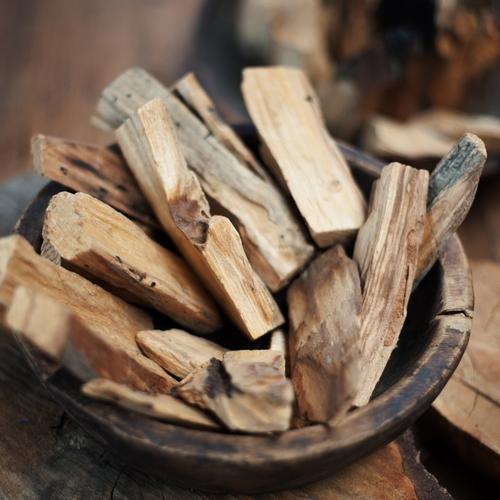 Bois sacré S  L'Holy Wood ou Palo Santo en espagnol, est un